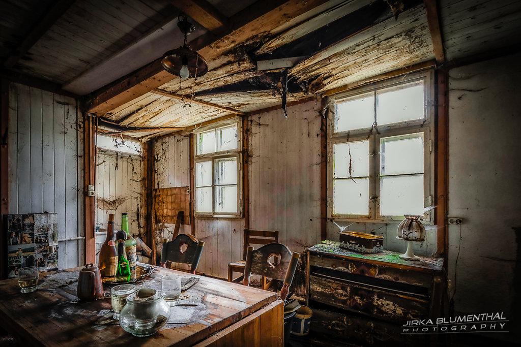 Das einsame Waldhaus #20
