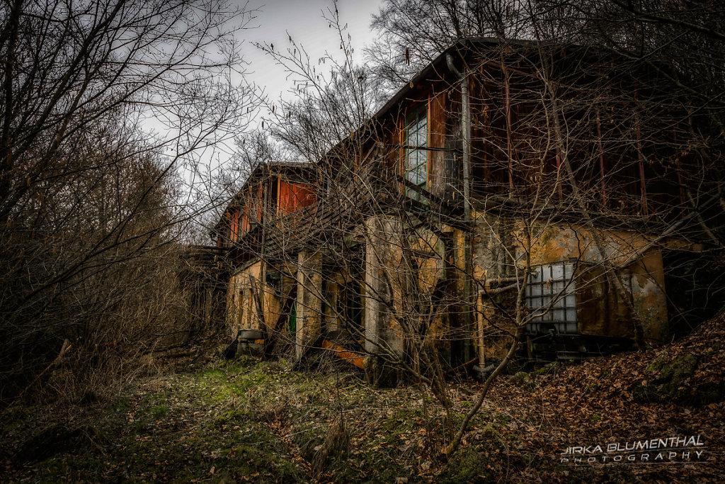Das einsame Waldhaus #17