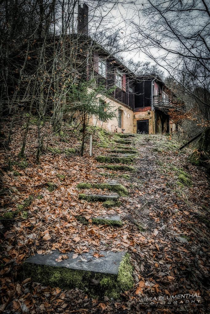 Das einsame Waldhaus #23